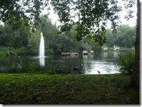 St. James Garden