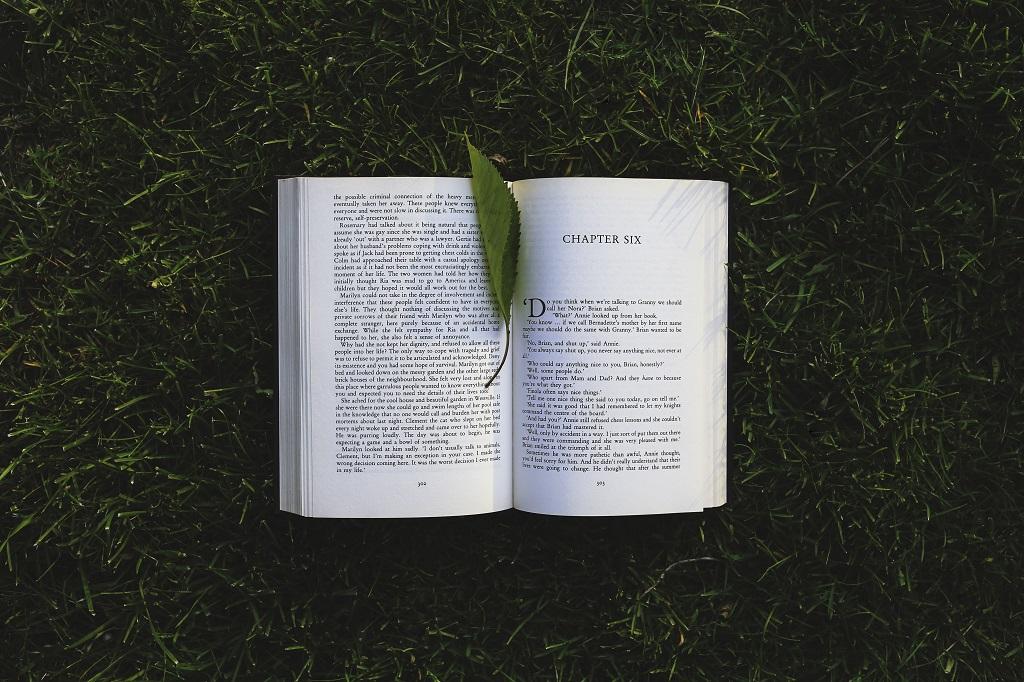 10 procentų knygų skaitymo taisyklė