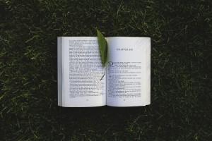 10% knygų skaitymo taisyklė