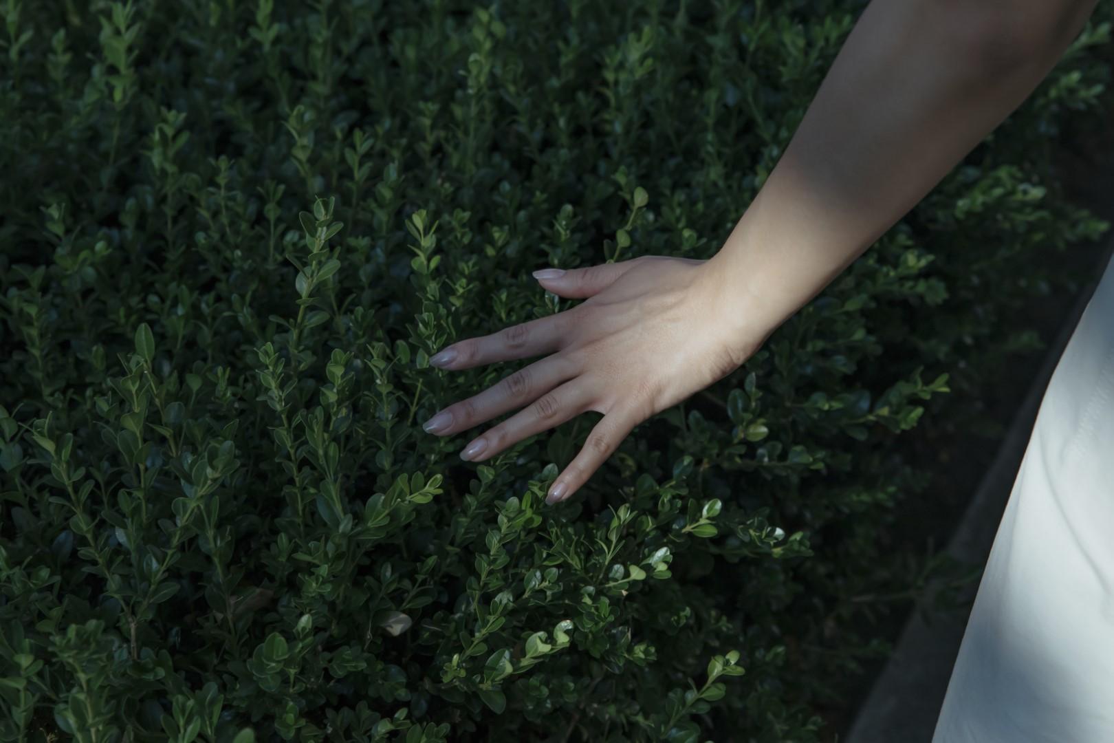 Ranka ant žolės