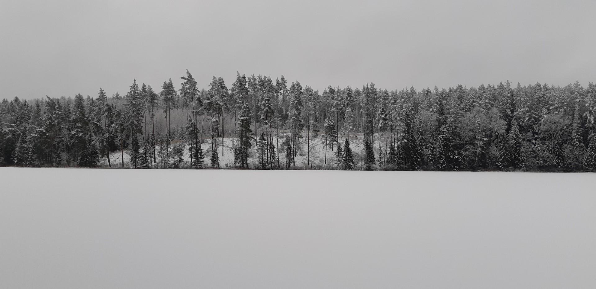 Vidiškės ežeras Varnys žiema